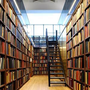 Библиотеки Темникова